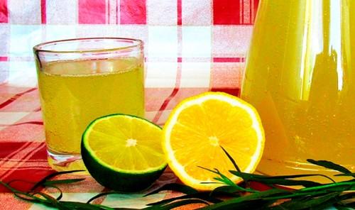Тархун с лимоном и лаймом
