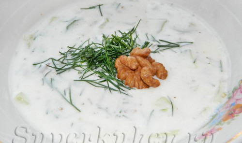 Болгарский летний суп на кефире