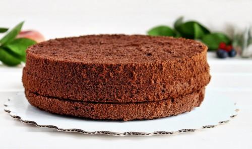 Шоколадный бисквит - подборка лучших рецептов