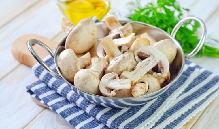 25 советов грибникам-кулинарам